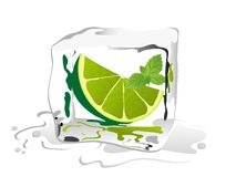 Lime in ice cube Stock Images