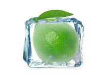 Lime and ice cube Royalty Free Stock Photo