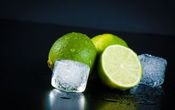Lime with ice cubes with space for text Stock Image