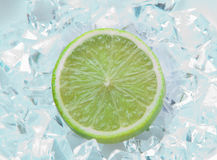 Lime on ice Royalty Free Stock Photos
