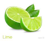Lime illustration Stock Photo