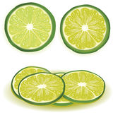 Lime illustration with slices Royalty Free Stock Photos