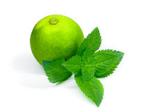 Lime isolated with mint on white background Royalty Free Stock Images