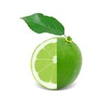 Lime isolated Royalty Free Stock Photography