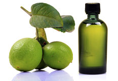 Lime and juice bottle Stock Image