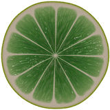 Lime juice slice. royalty free stock photo