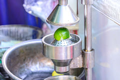 Lime juicing with stainless steel juicer Royalty Free Stock Photos