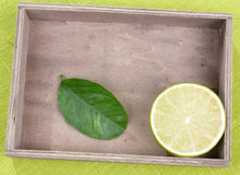 Lime with leaf Stock Image