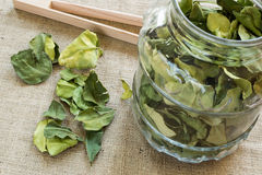 Lime leaves. In jar on textile bacground royalty free stock image