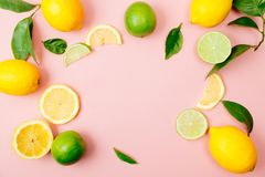 Lime and lemon frame on pink background Royalty Free Stock Image