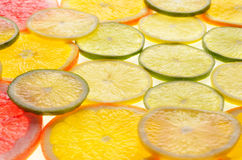 Lime, lemon, grapefruit and orange slices Stock Photos