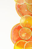 Lime lemon grapefruit and orange slices Royalty Free Stock Photos