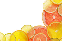 Lime lemon grapefruit and orange slices Royalty Free Stock Photography