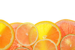 Lime lemon grapefruit and orange slices Stock Photos
