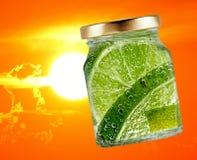 Lime, Lemon Lime, Lemon, Citric Acid stock images