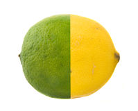 Lime and Lemon in One Royalty Free Stock Images