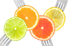Lime lemon orange and grapefruit citrus fruit Stock Image