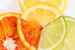 Lime, lemon and orange slice Stock Photos