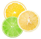 Lime, lemon and orange slices isolated on the white background Stock Images