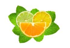 Lime, lemon and orange slices over mint leaves on white Stock Photo