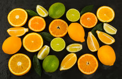 Lime, lemon, orange and tangerine on black background Stock Photography