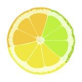 Lime lemon orange Royalty Free Stock Photos