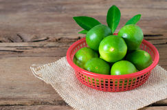 a Lime lemon in red bucket on rustic wooden background. copy spa Royalty Free Stock Photos