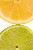 Lime and lemon slice Stock Photography