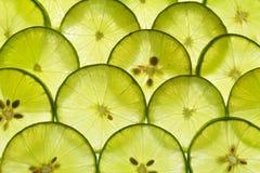 Lime lemon slice royalty free stock images
