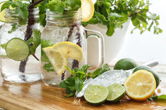 Lime lemon soda mint rosemary fresh drink summer Royalty Free Stock Photography