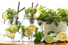 Lime lemon soda mint rosemary fresh drink summer Stock Photos