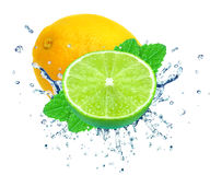 Lime and lemon splash Royalty Free Stock Photos