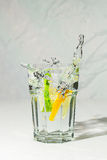 Lime and lemon water splash in gin tonic Royalty Free Stock Photo