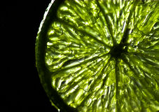 Lime Light Royalty Free Stock Image