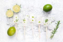Lime lollies with zest, limes and rosemary on the ice. On the white table Stock Image
