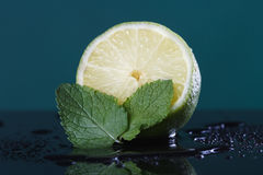 Lime and meant Stock Photos