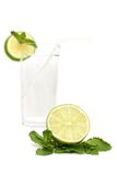 Lime and mint. Isolated on the white background Royalty Free Stock Images