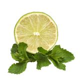 Lime and mint. Isolated on the white background Royalty Free Stock Photos
