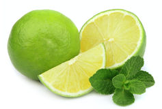 Lime with mint. Whole lime and cut with mint on white background Stock Images