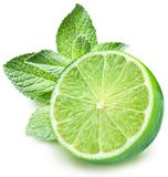 Lime and mint. On a white background Royalty Free Stock Photography