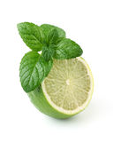 Lime with mint Stock Image