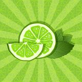 Lime and mint background Royalty Free Stock Photography