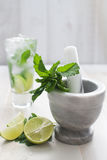 Lime and mint drink Royalty Free Stock Image
