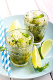 Lime and mint granita Royalty Free Stock Photo