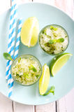 Lime and mint granita Stock Photography