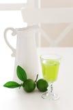 Lime mint homemade lemonade Royalty Free Stock Images