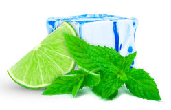 Lime with mint and ice Royalty Free Stock Photography