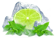 Lime with mint and ice Stock Images