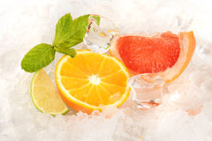 Lime, mint and ice cube. On a white background Stock Images