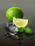 Lime and mint with ice cubes Royalty Free Stock Photography